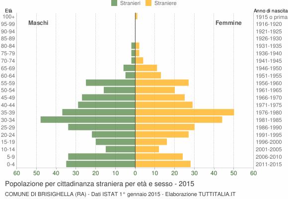 Grafico cittadini stranieri - Brisighella 2015