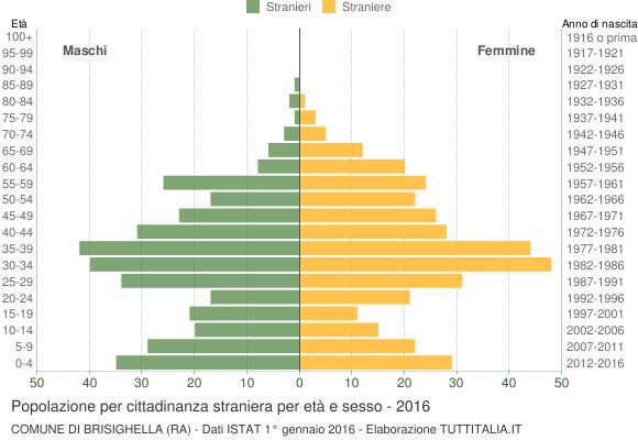 Grafico cittadini stranieri - Brisighella 2016