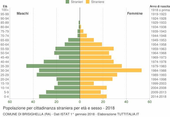 Grafico cittadini stranieri - Brisighella 2018