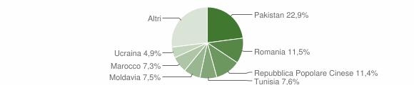 Grafico cittadinanza stranieri - Carpi 2018
