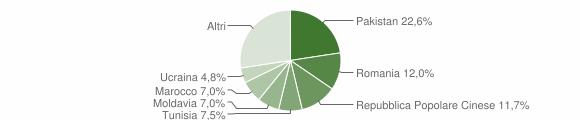 Grafico cittadinanza stranieri - Carpi 2019