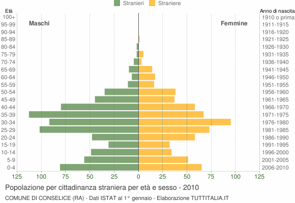 Grafico cittadini stranieri - Conselice 2010