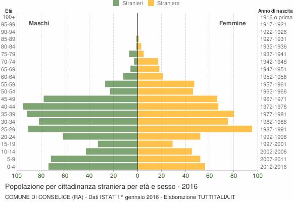 Grafico cittadini stranieri - Conselice 2016