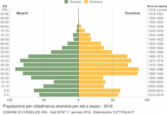 Grafico cittadini stranieri - Conselice 2018
