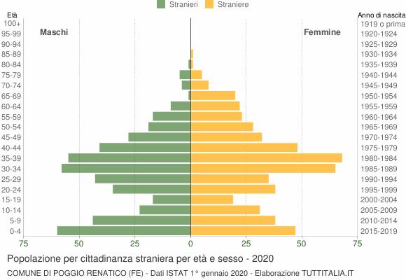 Grafico cittadini stranieri - Poggio Renatico 2020