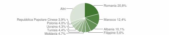 Grafico cittadinanza stranieri - Zola Predosa 2010