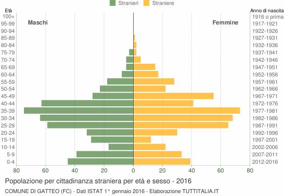 Grafico cittadini stranieri - Gatteo 2016