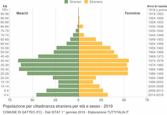 Grafico cittadini stranieri - Gatteo 2019