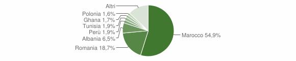 Grafico cittadinanza stranieri - Zocca 2009