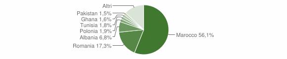Grafico cittadinanza stranieri - Zocca 2010
