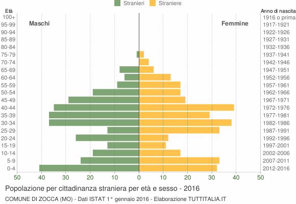 Grafico cittadini stranieri - Zocca 2016