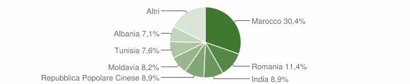 Grafico cittadinanza stranieri - Medolla 2010