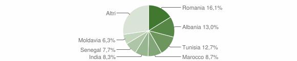 Grafico cittadinanza stranieri - Sissa Trecasali 2009