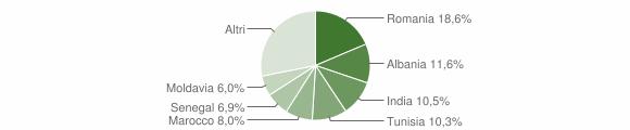 Grafico cittadinanza stranieri - Sissa Trecasali 2010