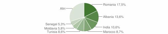 Grafico cittadinanza stranieri - Sissa Trecasali 2013