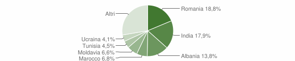 Grafico cittadinanza stranieri - Sissa Trecasali 2019