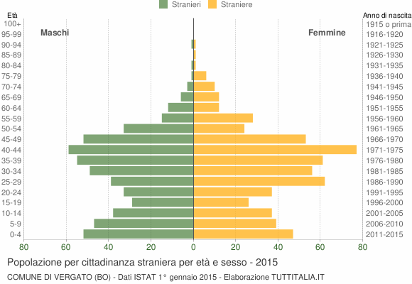 Grafico cittadini stranieri - Vergato 2015