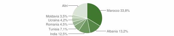 Grafico cittadinanza stranieri - Casina 2010