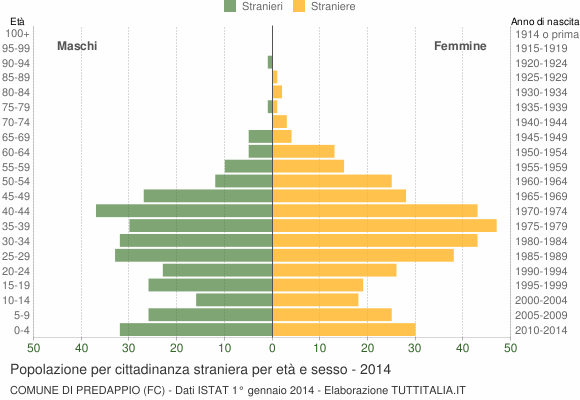 Grafico cittadini stranieri - Predappio 2014