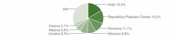 Grafico cittadinanza stranieri - Bagnolo in Piano 2019