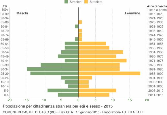 Grafico cittadini stranieri - Castel di Casio 2015