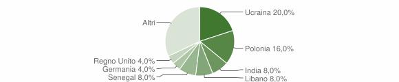 Grafico cittadinanza stranieri - Tredozio 2007