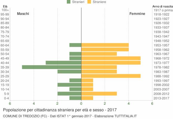 Grafico cittadini stranieri - Tredozio 2017