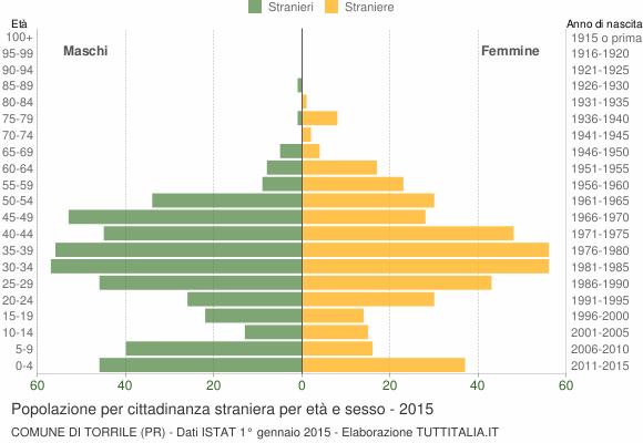 Grafico cittadini stranieri - Torrile 2015