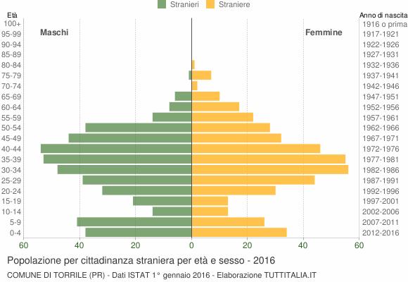 Grafico cittadini stranieri - Torrile 2016