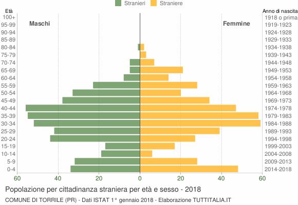 Grafico cittadini stranieri - Torrile 2018