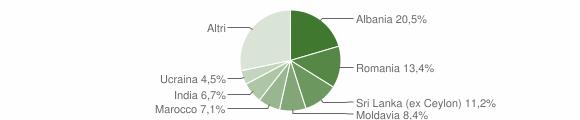 Grafico cittadinanza stranieri - Felino 2018