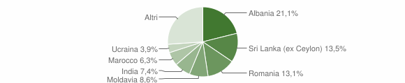 Grafico cittadinanza stranieri - Felino 2019