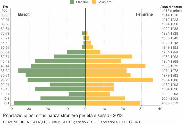 Grafico cittadini stranieri - Galeata 2013