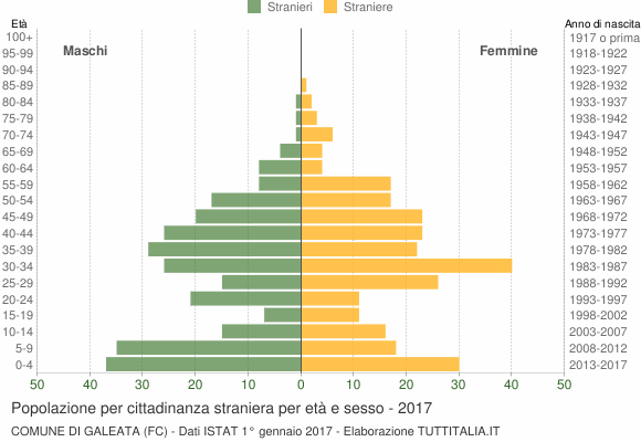 Grafico cittadini stranieri - Galeata 2017