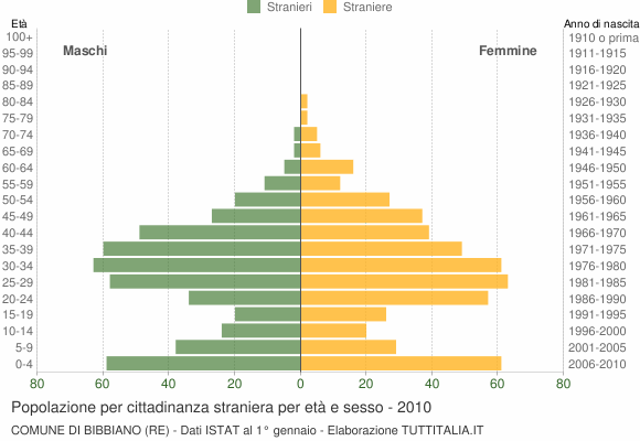 Grafico cittadini stranieri - Bibbiano 2010