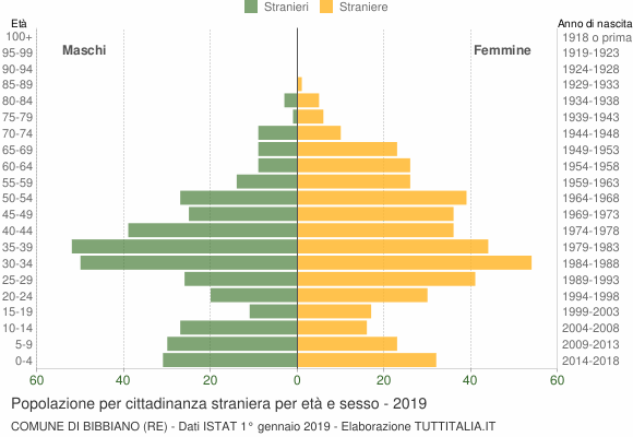 Grafico cittadini stranieri - Bibbiano 2019