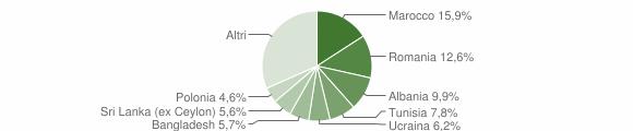 Grafico cittadinanza stranieri - Pianoro 2007