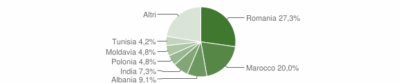 Grafico cittadinanza stranieri - Sestola 2013