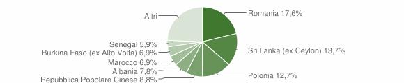 Grafico cittadinanza stranieri - Rocca San Casciano 2010