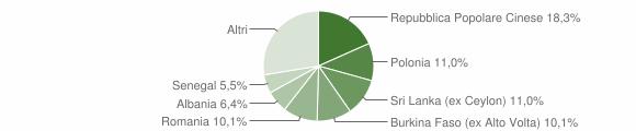 Grafico cittadinanza stranieri - Rocca San Casciano 2013