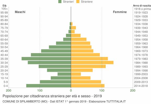 Grafico cittadini stranieri - Spilamberto 2019