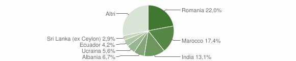 Grafico cittadinanza stranieri - Alseno 2019