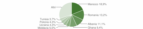Grafico cittadinanza stranieri - Formigine 2016