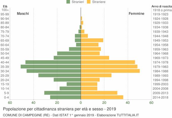 Grafico cittadini stranieri - Campegine 2019