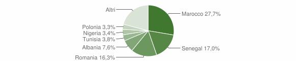 Grafico cittadinanza stranieri - Cotignola 2009