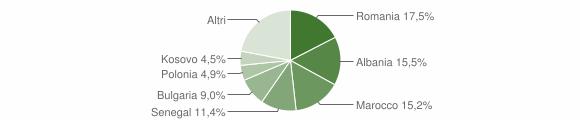 Grafico cittadinanza stranieri - Meldola 2013