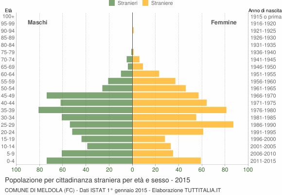Grafico cittadini stranieri - Meldola 2015