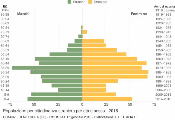 Grafico cittadini stranieri - Meldola 2018