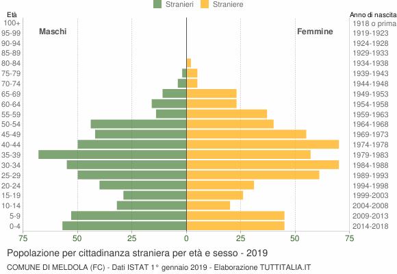 Grafico cittadini stranieri - Meldola 2019