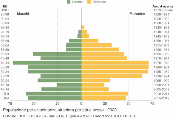 Grafico cittadini stranieri - Meldola 2020